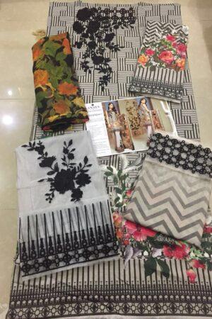 ANAYA Cotton Master Replica 2019
