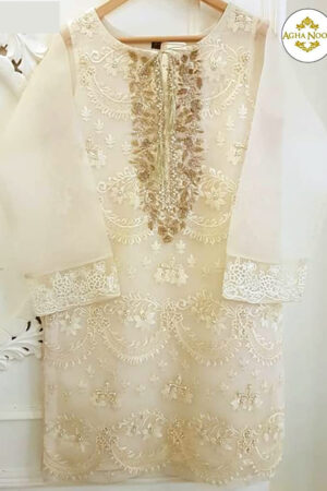 AGHA NOOR Organza Dress 2020